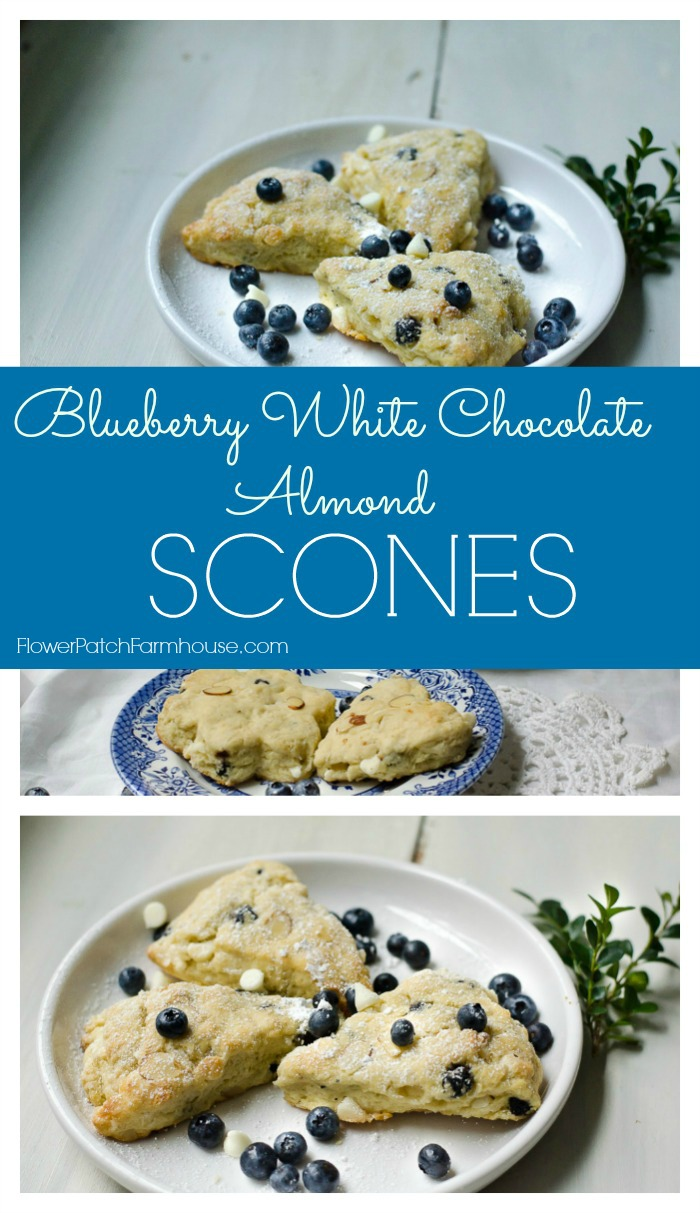 Gluten Free Blueberry White Chocolate Scones