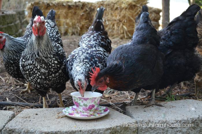 Tea with the Ladies, FlowerPatchFarmhouse.com