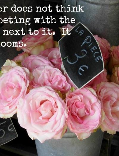 A flower does not compete inspriation, FlowerPatchFarmhouse.com