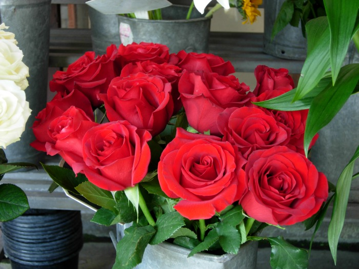 Red roses, FlowerPatchFarmhouse.com