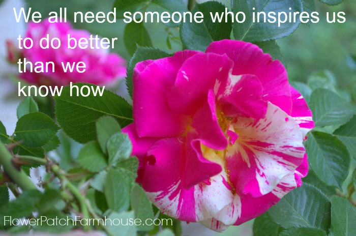 We all need inspiration quote