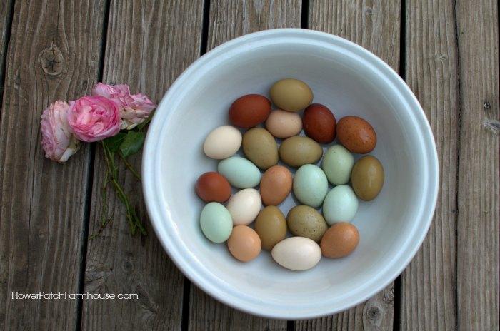 bowl of colorful chicken eggs, FlowerPatchFarmhouse.com