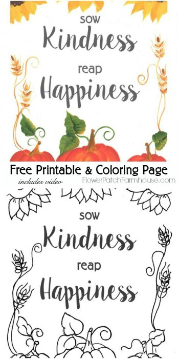 Download a free Sow Kindness Reap Happiness Fall Printable & Coloring page. I include a video of how I painted it too! FlowerPatchFarmhouse.com