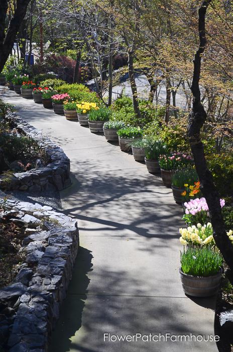 Ironstone March 2016, FlowerPatchFarmhouse.com (68 of 77)