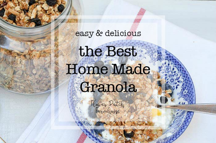 bowl of granola with text overlay