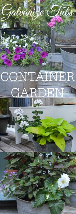 Galvanized tubs and buckets container garden. Wonderful planters for a cottage farmhouse feel. Relatively inexpensive and they last forever.