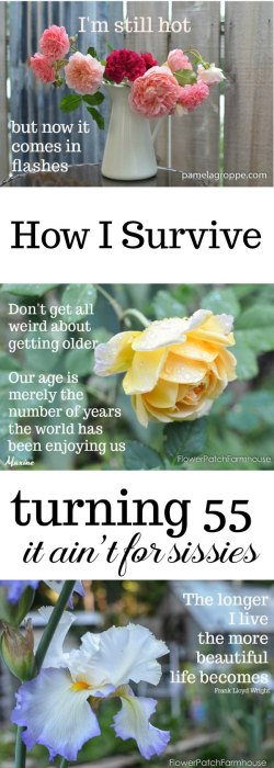 Turning 55 and Feeling fine, getting older is not for sissies. suck it up Buttercup and join the Fabulous 50's!
