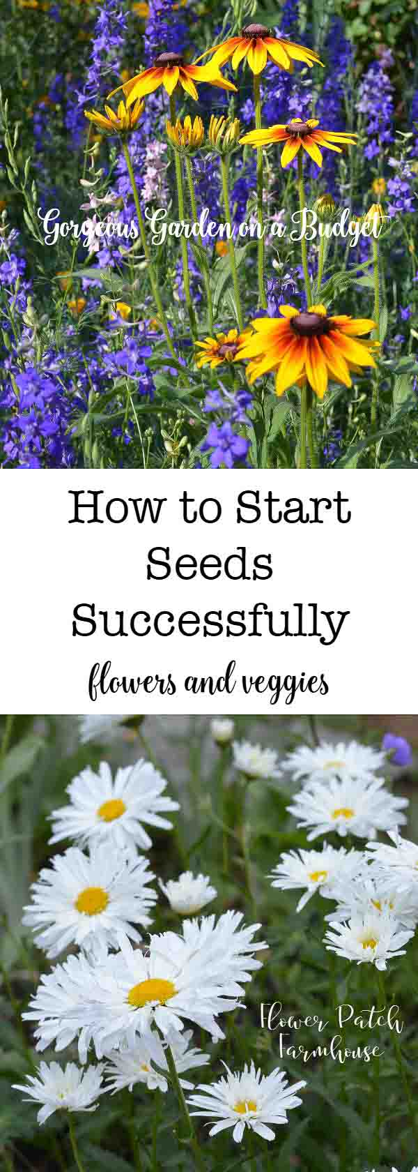How to start a lot of seeds for a gorgeous garden!  Step by step instructions anyone can follow.  Ready for the best garden ever?