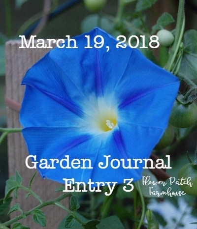 Garden Journal March 19, 2018