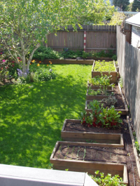 landscaping Designs: Vegetable garden pictures raised beds