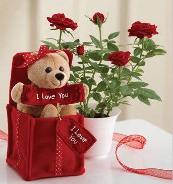 Image Of Valentine Flowers And GiftsPNG 2 Comments