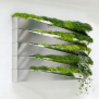 Modern Green Wall Decoration Grass Mirror Png