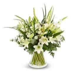 פרחים לפסח