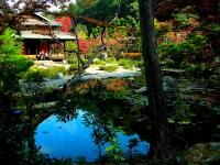 Japanese Gardens on Pinterest   Gardens, Portland and Bridges