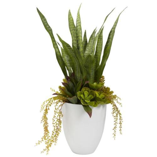 silk succulent plant
