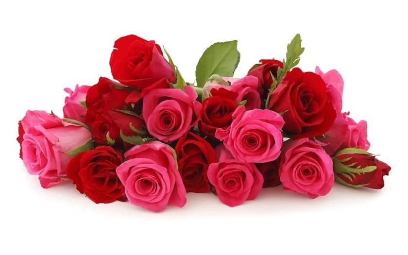 valentine flower deals