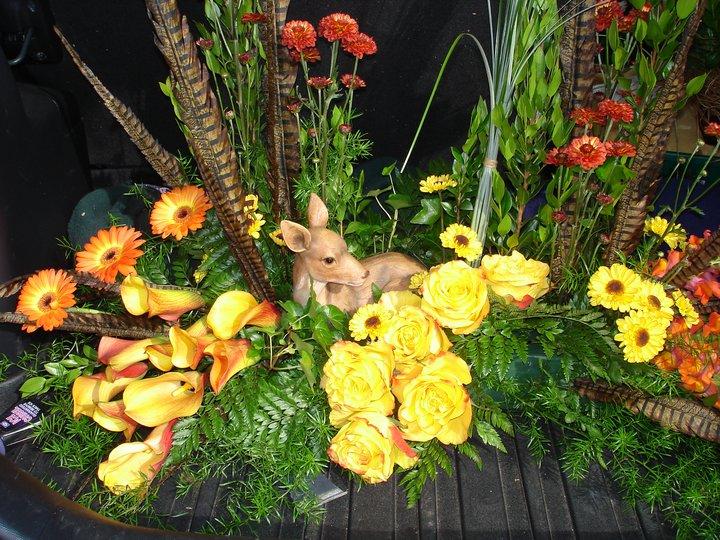 Fall Bird Feeder Wallpaper Creative Amp Custom Funeral Flower Trends