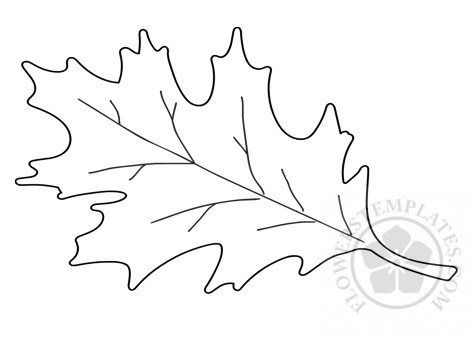 Autumn Leaf Coloring Page Flowers Templates