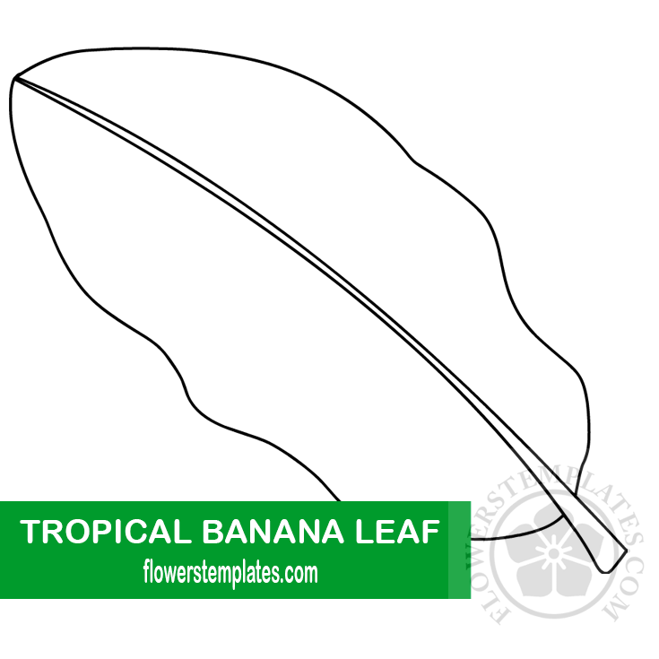 Tropical Banana Leaf Template Flowers Templates This printable tree coloring page features a cotton tree. tropical banana leaf template flowers