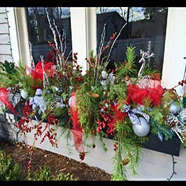 Winter Window Box Ideas