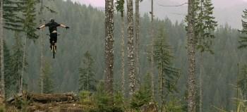 Squamish Pseudotsuga