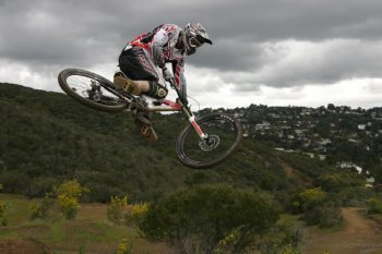 steve peat syndicate