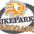 bikepark leogang logo