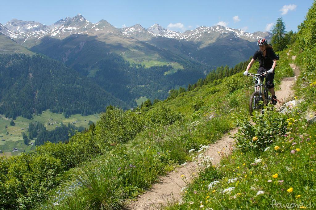 Bikeparks Schweiz - Rinerhorn Davos-Klosters