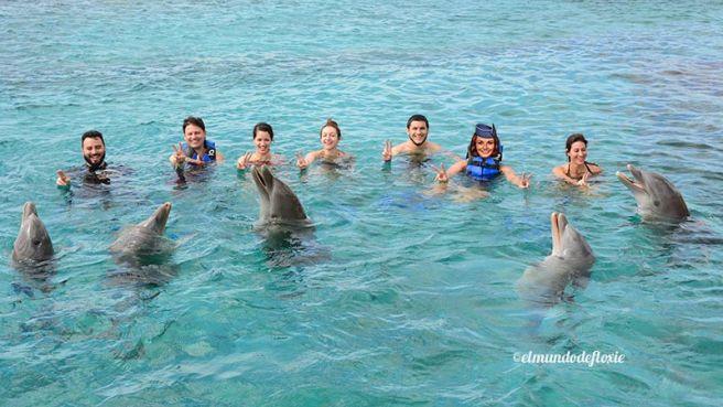 grupodelfines