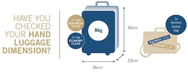 baggage-info1