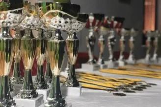 Campamento Fluency Bear 2020 Concursos