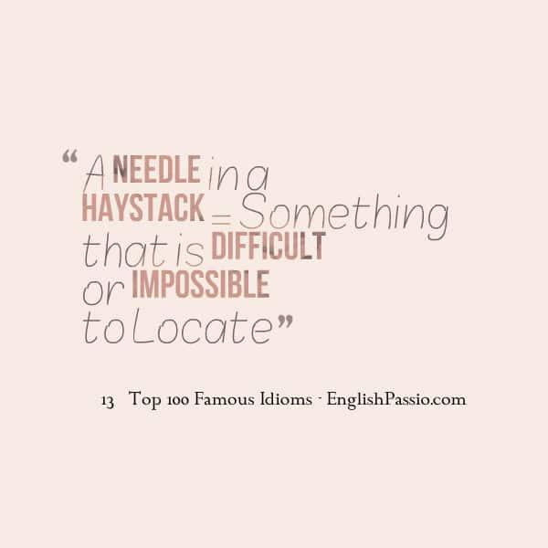 Idiom 13 a needle in haystack