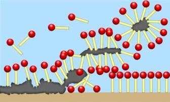 Image result for detergent molecule