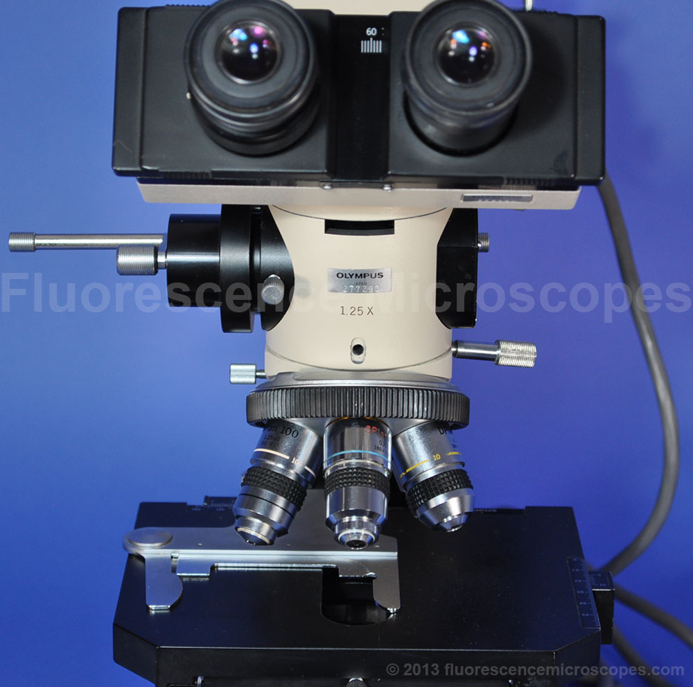 Fluorescence Microscopes  Olympus Bh2 Fluorescence