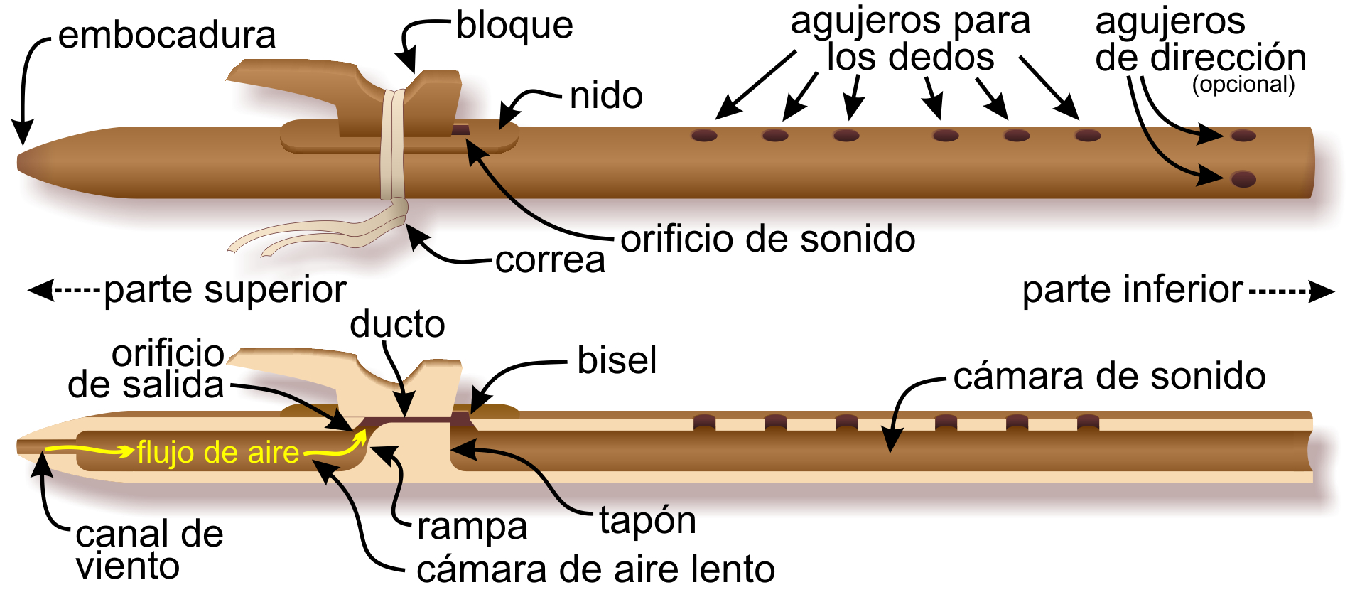Anatomy Of The Native American Flute