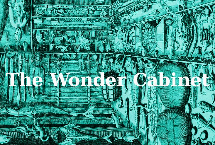 The Wonder Cabinet