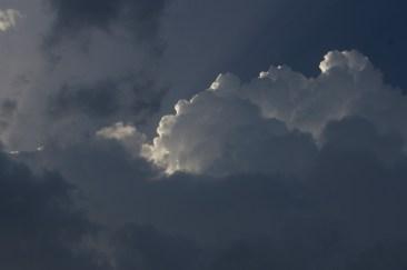Anne Murray Cloud