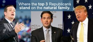 SaveAmerica.com 2016 Presidential Report Card on the Natural Family