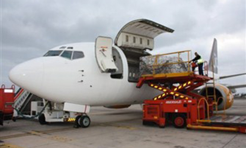 Incredible 737 Loading Cargo For A Flight
