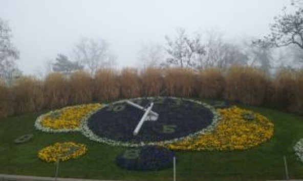 Reloj florido de Ginebra. ©Propiedad de Fly and Grow