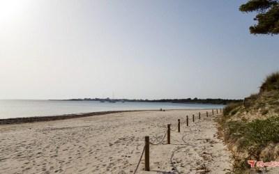 Excursión a la playa virgen de es Carbó – sur de Mallorca