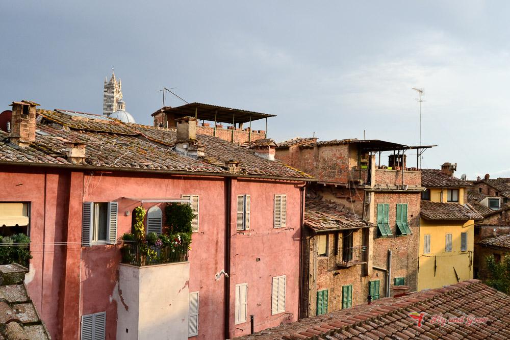 miradores que ver en Siena