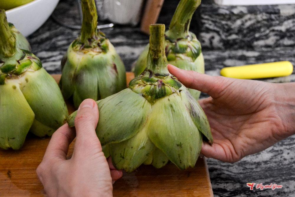 Alcachofas para receta alcachofas a la judía