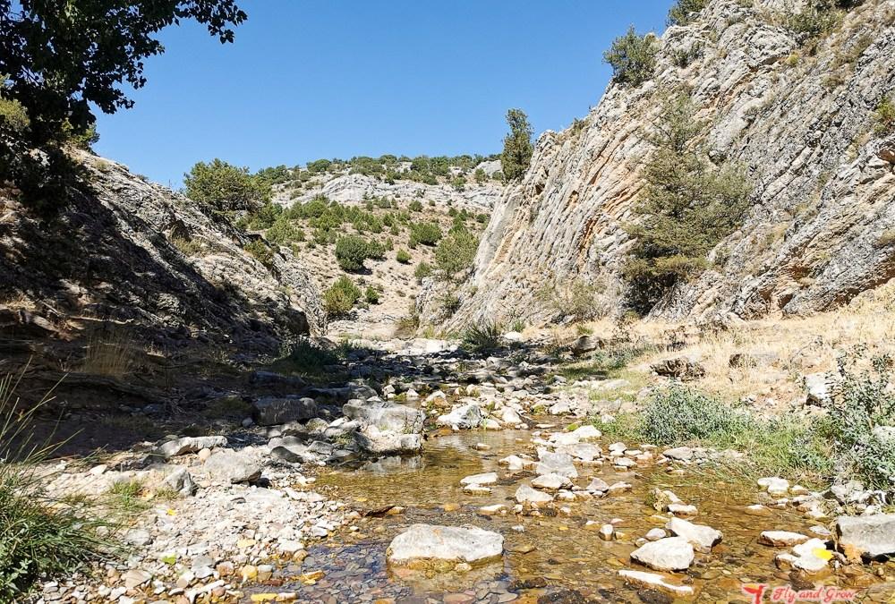 Escapada cultural en Soria: visita al observatorio de Borobia y alrededores