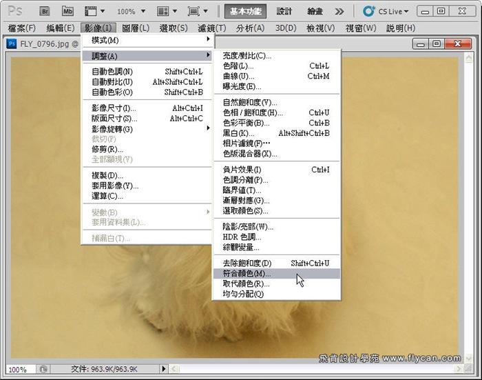 Photoshop 後製修圖  - Photoshop 教學 - 校正色彩 - 仿自動白平衡 - 速成篇 - fly02_thumb