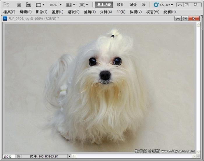 Photoshop 後製修圖  - Photoshop 教學 - 校正色彩 - 仿自動白平衡 - 速成篇 - fly06_thumb