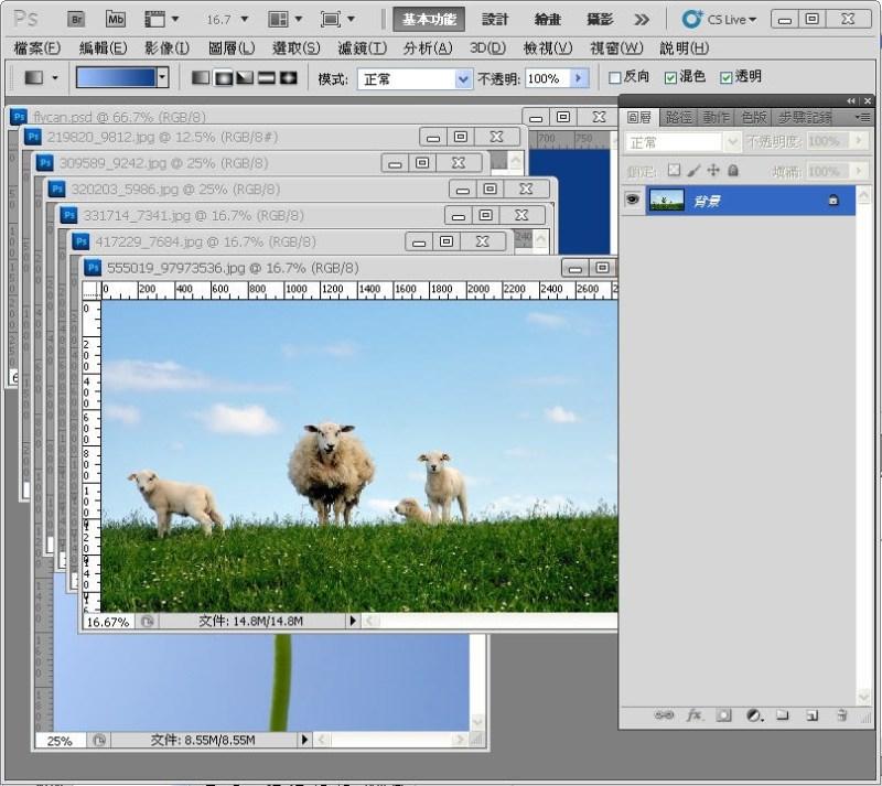 Photoshop 影像設計  - PHOTOSHOP 入門教學 - 圖片固定裁切與白邊 - SNAG0007