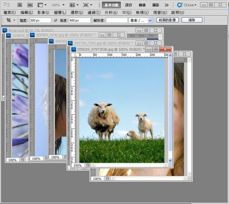 Photoshop 影像設計  - PHOTOSHOP 入門教學 - 圖片固定裁切與白邊 - SNAG0013