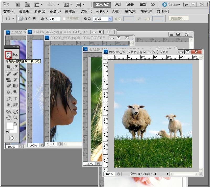 Photoshop 影像設計  - PHOTOSHOP 入門教學 - 圖片固定裁切與白邊 - SNAG0020