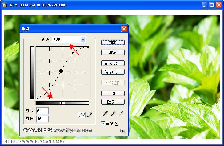 Photoshop 影像設計 Photoshop 後製修圖  - Photoshop 教學 - 曲線 - 色彩對比 - 入門篇【三】 - curve_01_796